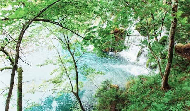 Bela cachoeira na floresta verde verão.