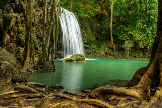 Bela cachoeira na floresta verde