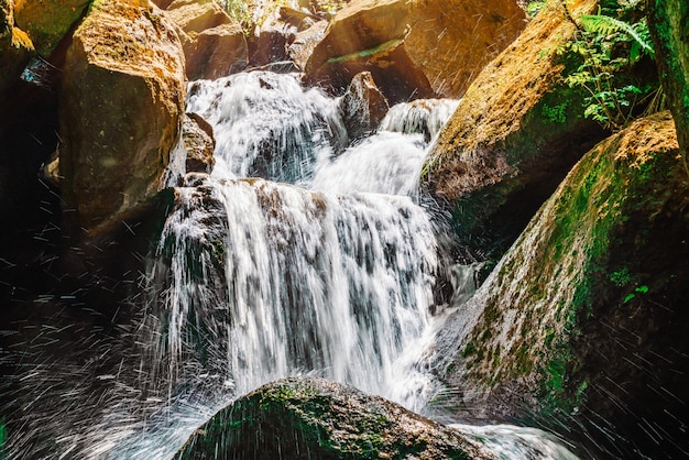Bela cachoeira na selva