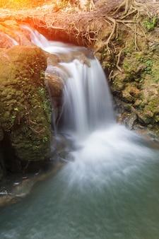 Bela cachoeira pequena na floresta