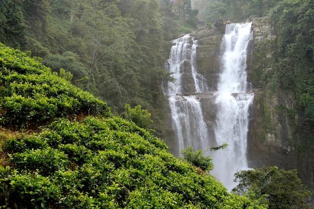 Bela cachoeira ramboda na ilha do sri lanka