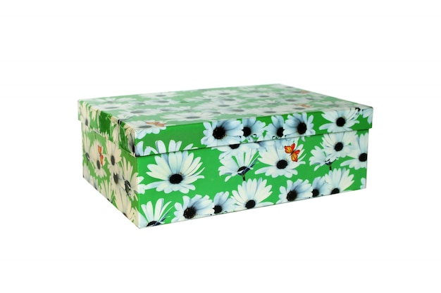 Bela caixa verde isolada