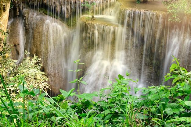 Bela cênica da cachoeira e folhas verdes. tailândia