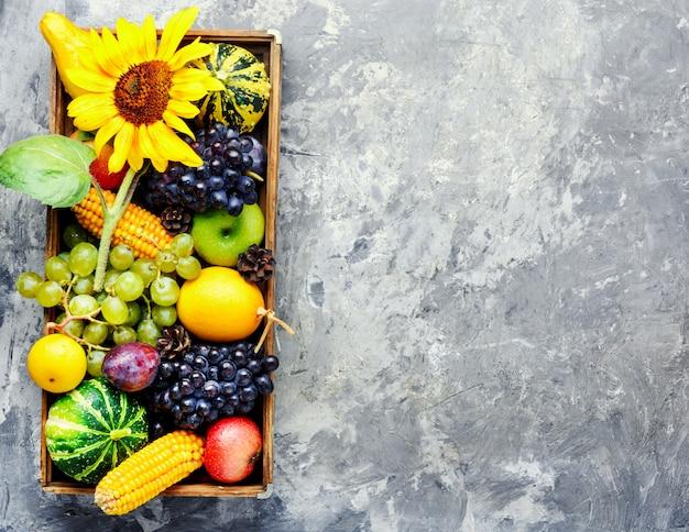 Bela colheita de outono