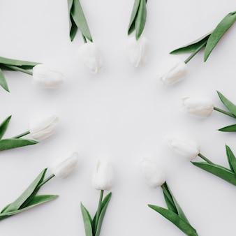 Bela composição com flores sobre fundo branco, com espaço no meio