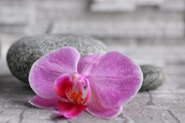 Bela composição de seixos e orquídeas