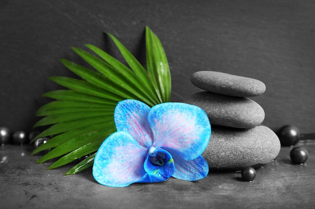 Bela composição de spa com orquídeas azuis e pedras