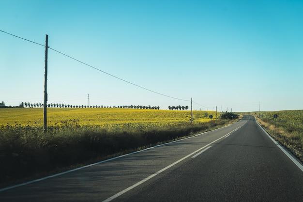 Bela estrada passando por um campo coberto de grama e uma fazenda cheia de flores amarelas