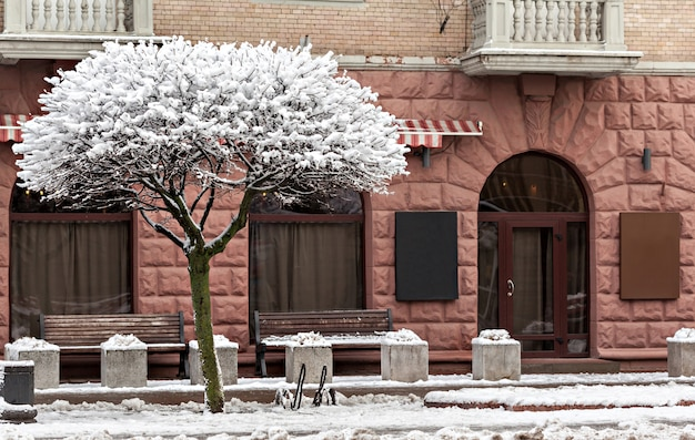 Bela fachada no inverno