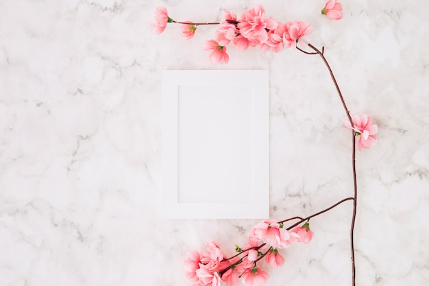 Bela flor de cerejeira sakura na primavera perto da moldura branca vazia no plano de fundo texturizado