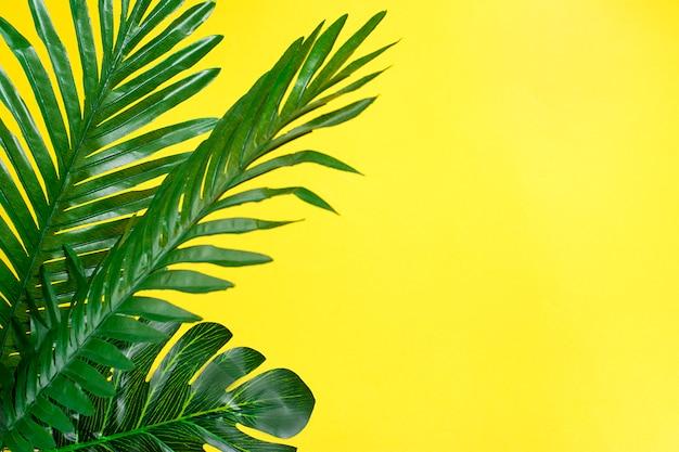 Bela floral de árvore tropical deixa monstera e palma