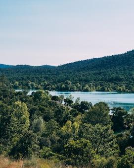 Bela floresta com um lago e colinas