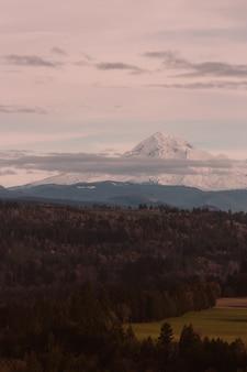 Bela floresta com uma alta montanha rochosa de neve