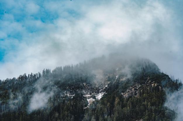 Bela foto aérea de uma floresta cercada por nuvens e nevoeiro