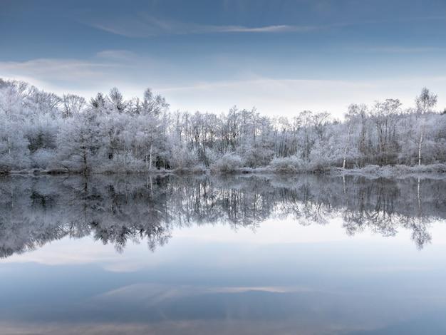 Bela foto da água refletindo as árvores nevadas sob um céu azul