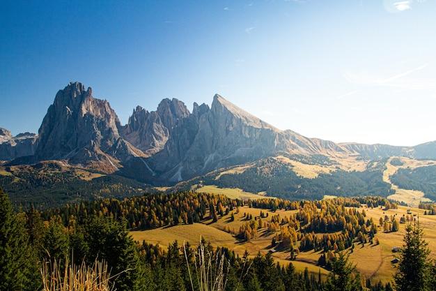 Bela foto da dolomita com montanhas e árvores sob um céu azul na itália