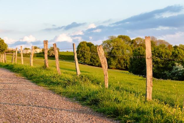 Bela foto da estrada através do campo cercado por árvores