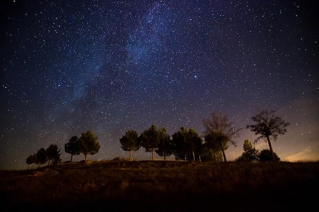 Bela foto da via láctea acima de uma colina com poucas árvores à noite