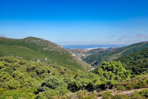 Bela foto das incríveis paisagens sob o céu azul no verão