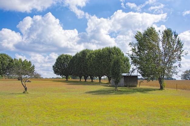 Bela foto de algumas árvores e uma pequena casa no vale sob o céu nublado