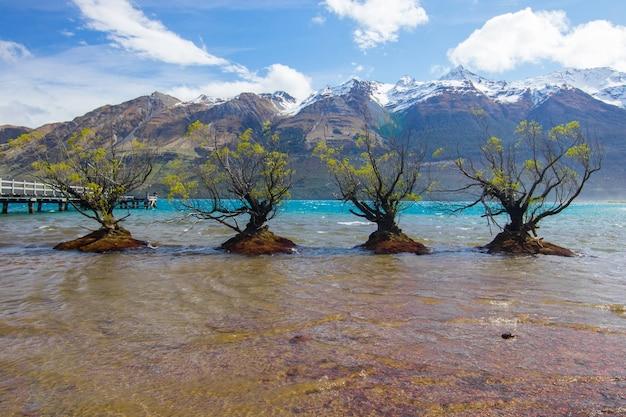 Bela foto de árvores no lago glenorchy, nova zelândia