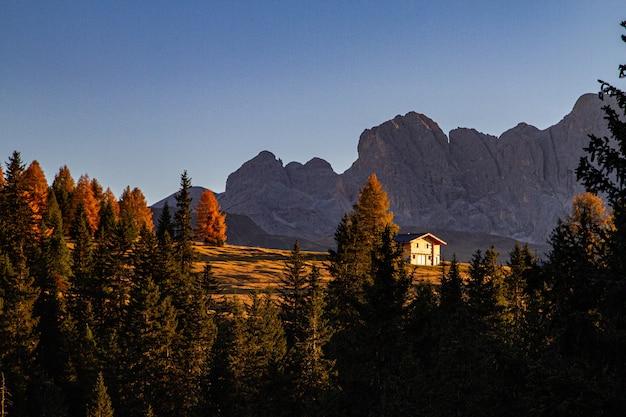 Bela foto de árvores verdes com uma casa e uma montanha à distância em dolomita na itália
