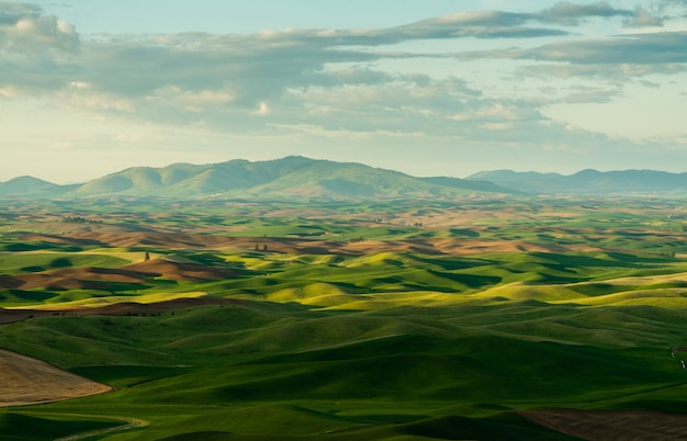 Bela foto de colinas gramadas e montanhas ao longe