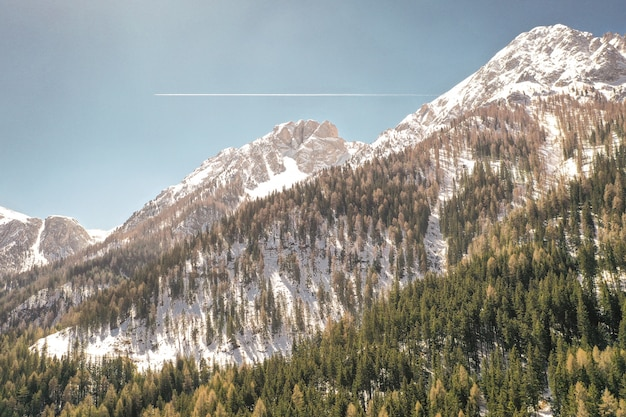 Bela foto de montanhas nevadas e árvores em uma colina