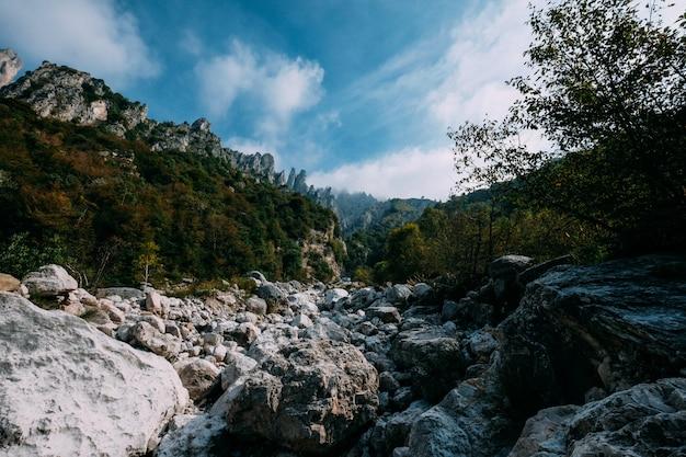 Bela foto de pedras no meio de árvores e montanhas ao longe