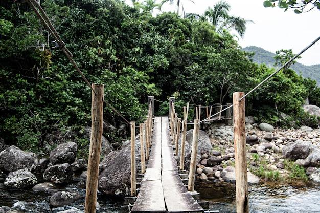 Bela foto de ponta negra sobre um rio na floresta em paraty, brasil