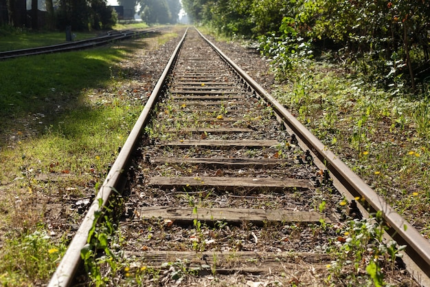 Bela foto de trilhos de trem cobertos de grama durante o dia
