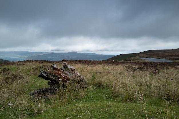 Bela foto de um campo cercado por colinas sob o céu claro