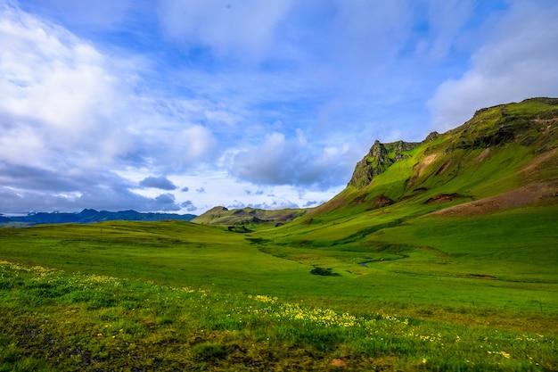 Bela foto de um campo gramado com flores amarelas perto de montanhas sob um céu nublado