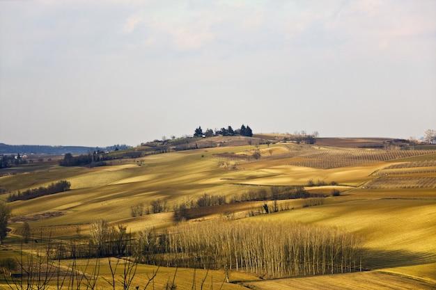 Bela foto de um campo gramado seco com árvores sob um céu nublado