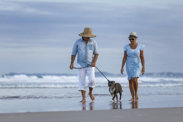 Bela foto de um casal na praia com um cachorro stafford inglês azul