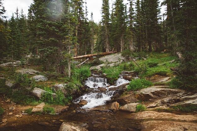 Bela foto de um córrego da água sobre a colina que flui para baixo rodeado por plantas e árvores