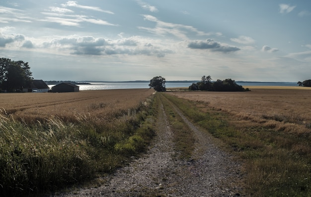 Bela foto de um grande campo com faixas de carro no chão na zona rural