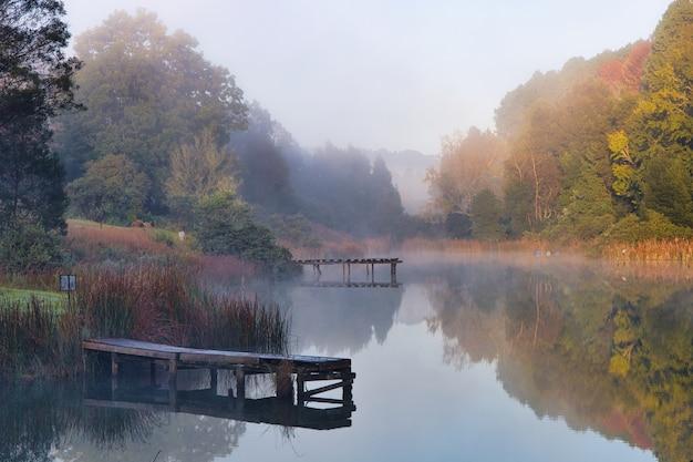 Bela foto de um lago cercado por árvores e uma névoa se formando sobre ele