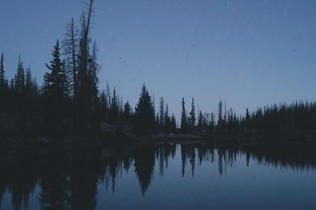 Bela foto de um lago cercado por uma floresta