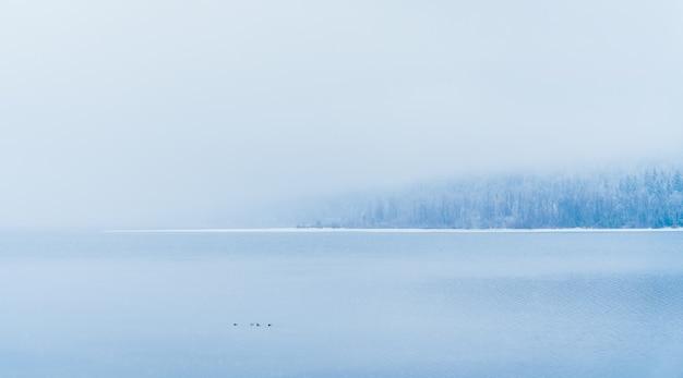 Bela foto de um lago com árvores nevadas à distância sob a névoa