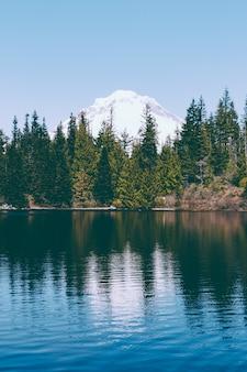 Bela foto de um lago com uma floresta de pinheiros e reflexos no lago