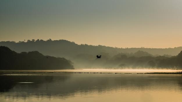 Bela foto de um pássaro voando sobre a água do lago cercado por montanhas e árvores