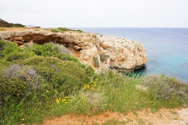 Bela foto de um penhasco coberto de grama perto da costa de um oceano calmo
