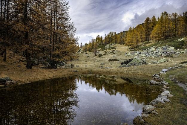 Bela foto de um pequeno lago no vale cheio de árvores amarelas