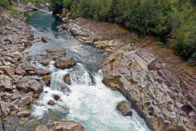 Bela foto de um riacho de água entre as rochas de uma floresta