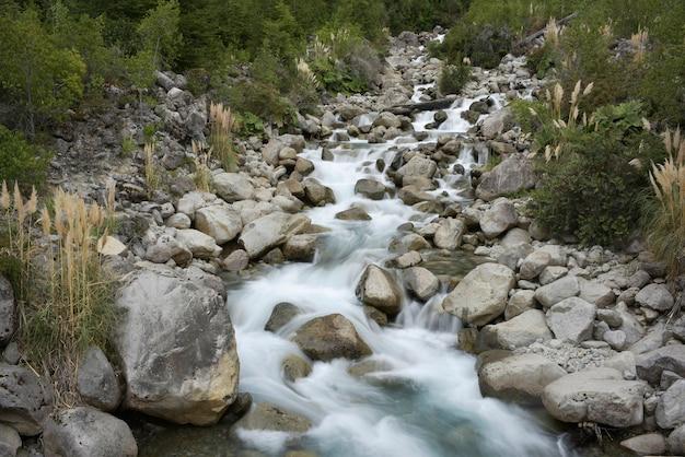 Bela foto de um riacho por entre as rochas e árvores da floresta