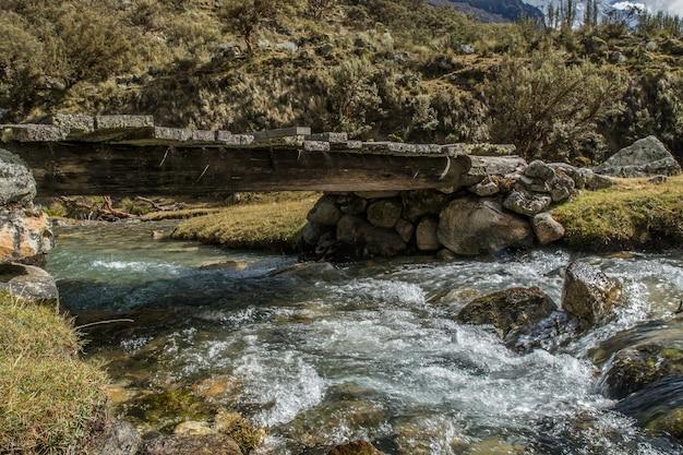 Bela foto de um rio sob uma ponte no meio de uma floresta