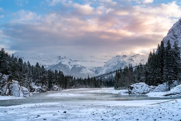 Bela foto de uma área montanhosa coberta de neve e cercada por florestas