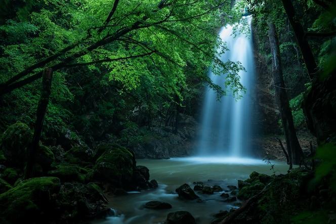 bela foto de uma cachoeira na floresta