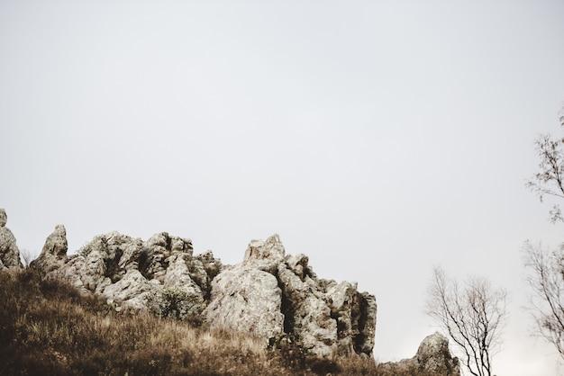 Bela foto de uma colina gramada seca com pedras e árvores sem folhas, sob um céu nublado